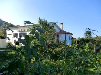 Camino-Portugues-Portugal-2012-124