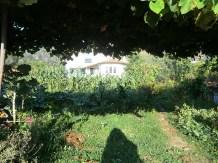Camino-Portugues-Portugal-2012-136