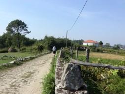 Camino-Portugues-Portugal-2012-207