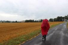 Via-Podiensis-2013_1577