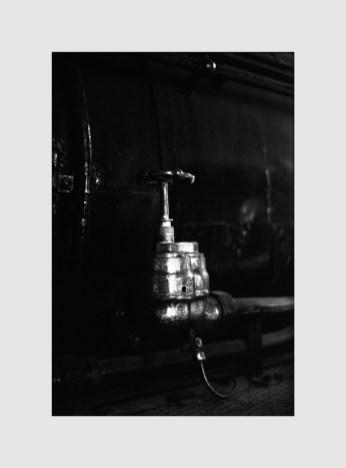 BESSA R2M  NOKTON 50mm f1.1  Rollei Retro 80s