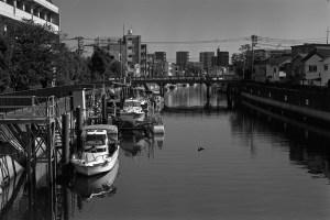 Leica MP  summarit 5cm f1.5   Rollei Retro80s