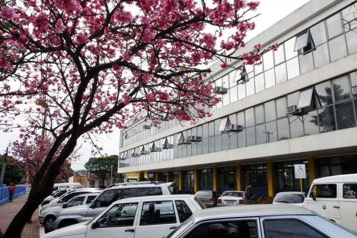 Prefeitura de Apucarana, representando abrir empresa em Apucarana - Abertura Simples