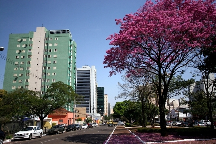 Foto na cidade de Campo Grande, representando escritório de contabilidade em Campo Grande - Abertura Simples