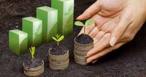 Imagem de algumas plantas para remeter ao empreendedor que deseja saber o que é marketing sustentável