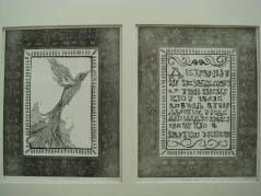 Stephanie Stratton BA Fine Art & English Literature