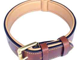 Top 3 Best Collars For Dog 2019 Review