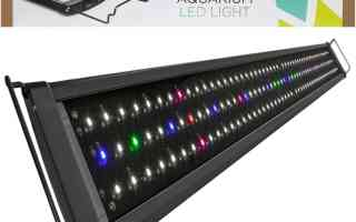 Top 10 Best LED Aquarium Lights 2020 Review