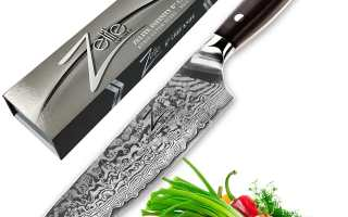 Top 10 Best Professional Chef Knives Review