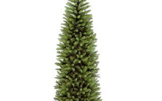 Top 10 Best Christmas Trees in 2019 Review