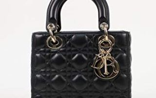 Top 3 best mini lady Dior bag in 2019 review