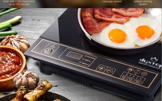 Top 5 Best Portable Electric Stoves In 2019 Review