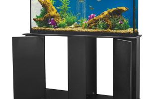 Top 5 best 75 gallon reptile tanks for sale in 2019 review