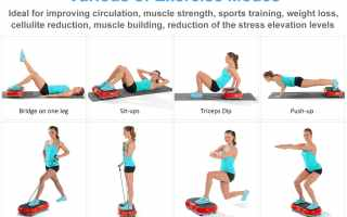 Top 5 best vibration machines for weight loss in 2019 reviews
