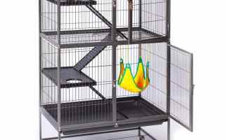 Top 5 Best Prevue Ferret Cages in 2020 reviews