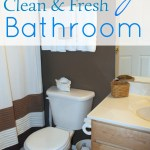 A Naturally Clean and Fresh Bathroom