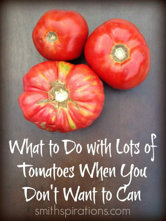 What to do with lots of tomatoes when you don't want to can