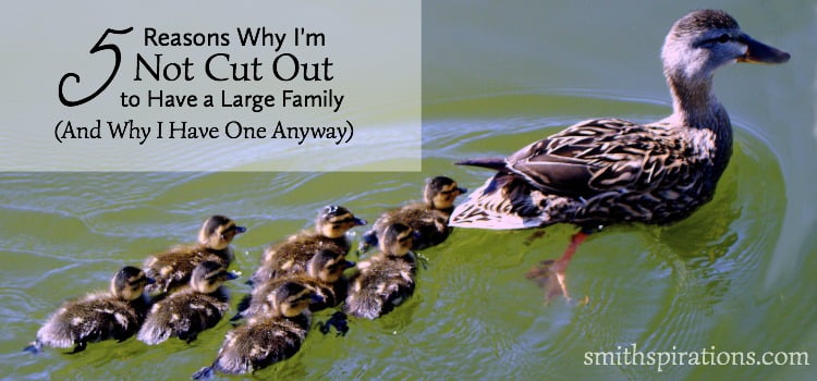 5 Reasons Why I'm Not Cut Out to Have a Large Family 2