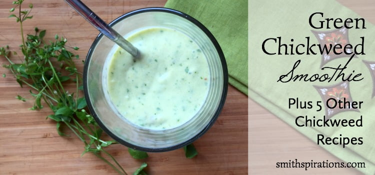 Green Chickweed Smoothie