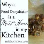 Why A Food Dehydrator Is a Must-Have in my Kitchen
