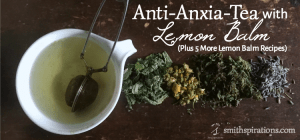 Anti-Anxia-Tea with Lemon Balm