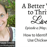 How to Find, Identify, & Use Chickweed (Live Video Replay)