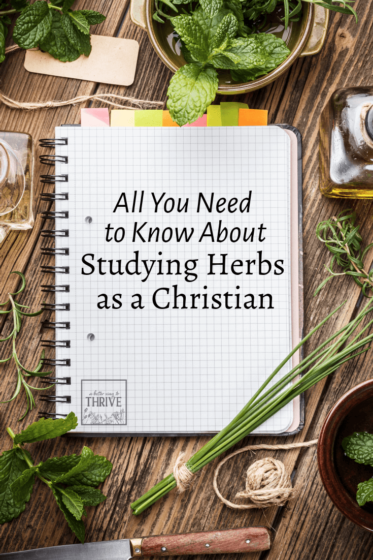 Studying herbalism as a Christian can be difficult. Many schools and teachers promote ideas that are contrary to Scripture and some are even hostile towards the faith. You might feel like you have to choose between a natural health education and your Christian beliefs, but that's not so. Learn how to to find the best ways to study without the woo while also honoring your faith. via @abttrway2thrive