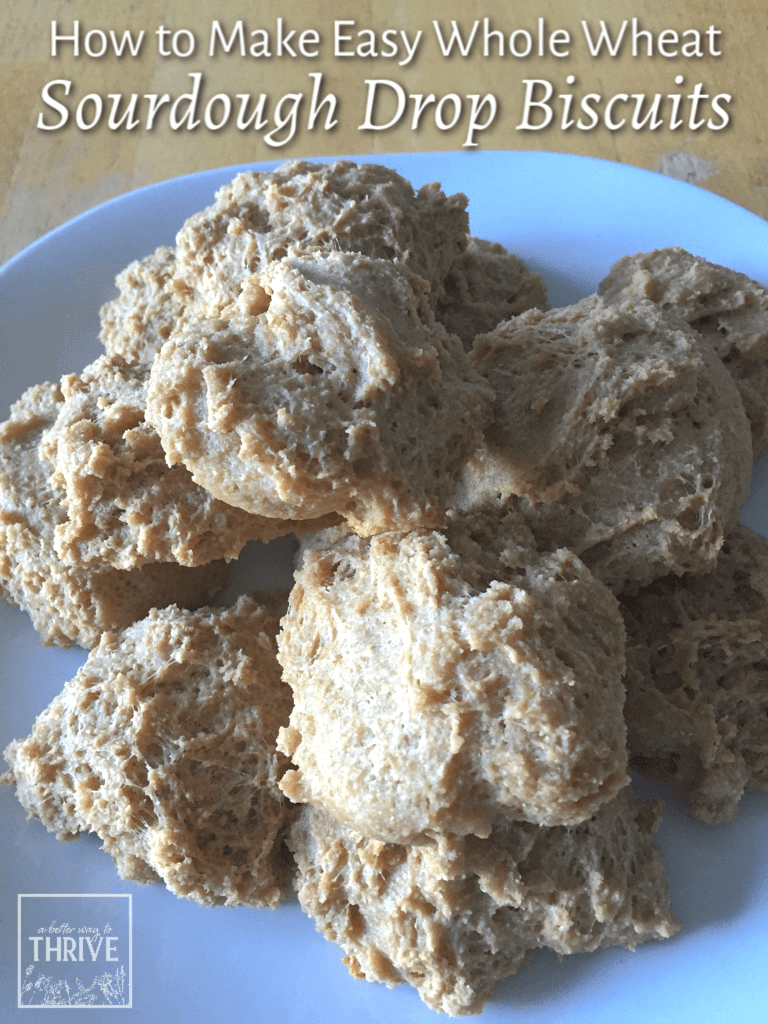Made with whole wheat flour and without much fuss, these easy sourdough drop biscuits are a delicious, hearty companion to any meal. With minimal hands-on time, they couldn't be easier! #sourdough #healthycooking #baking #fromscratch via @abttrway2thrive