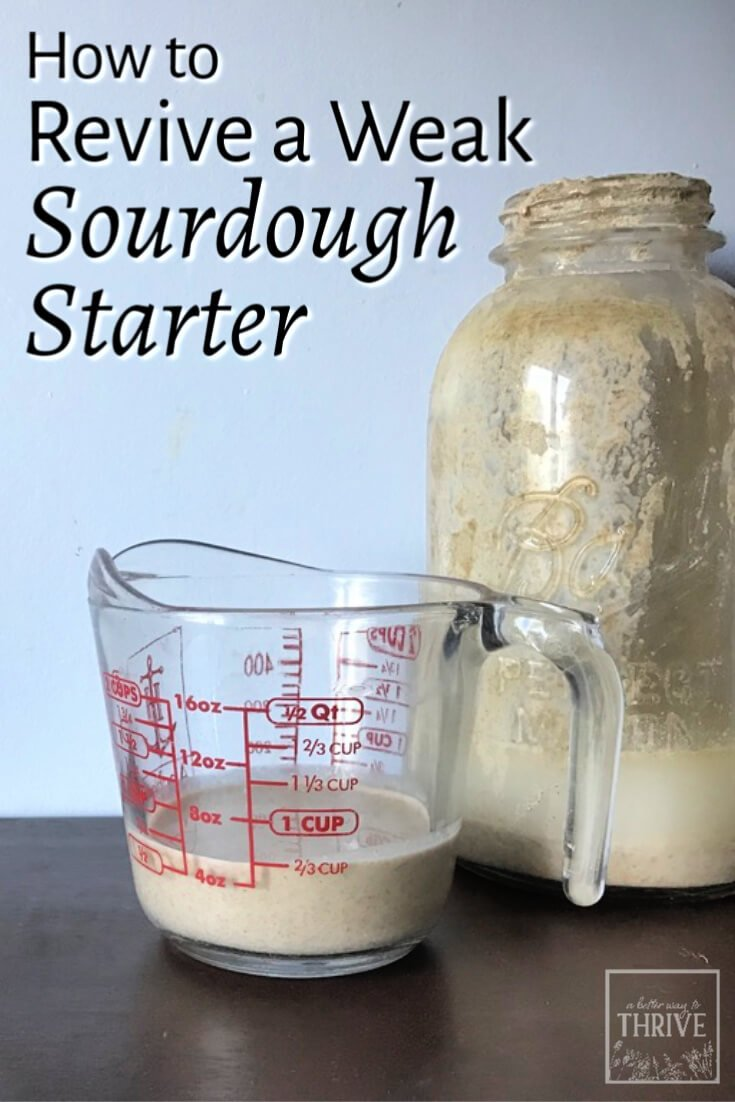 Sourdough starter looking weak, or maybe even a little (gasp!) moldy? Don't panic! Here's how to revive a weak sourdough starter and get it back in shape with a little time and TLC. In just a day, you'll have your old faithful sourdough starter back and ready for baking healthy and delicious sourdough goodies. via @abttrway2thrive