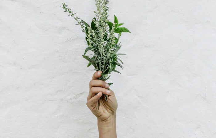 There is no sin in using herbs for the Christian
