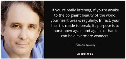 harvey andrew quote heartbreak