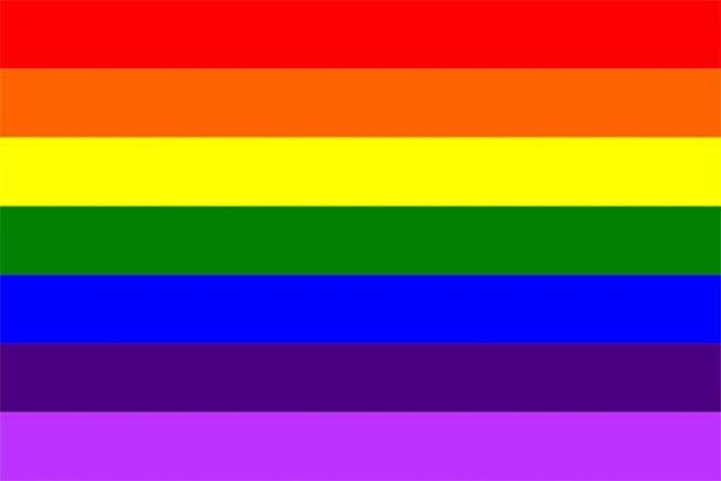 1978-1999 Bandeira do Orgulho