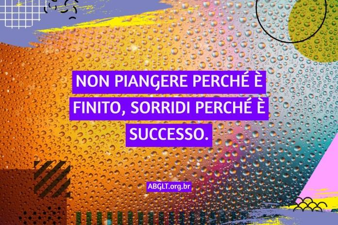 NON PIANGERE PERCHÉ È FINITO, SORRIDI PERCHÉ È SUCCESSO.