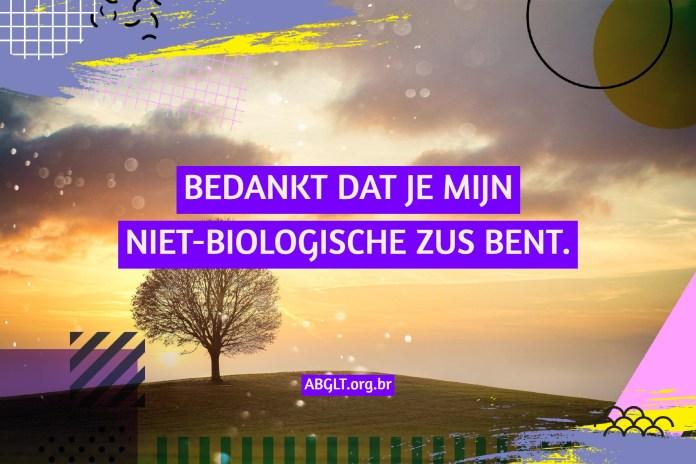 BEDANKT DAT JE MIJN NIET-BIOLOGISCHE ZUS BENT.