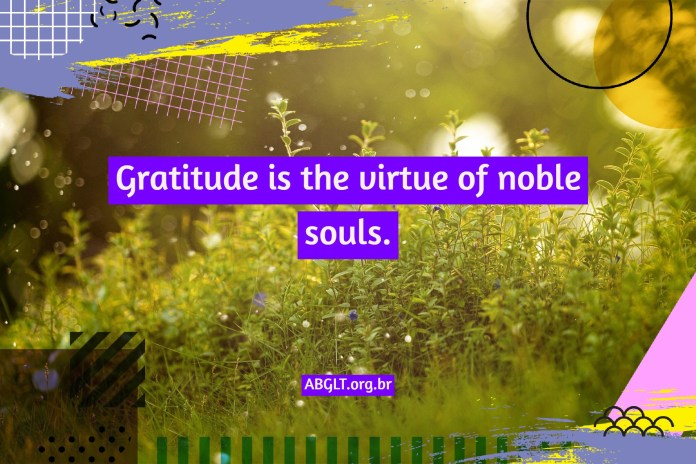 Gratitude phrases and messages