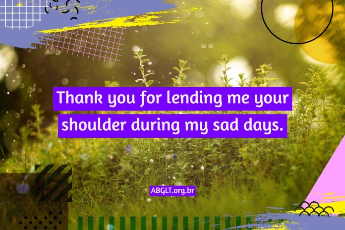 Thank you for lending me your shoulder during my sad days.