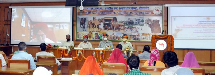 National Research Center for Camel (NRCC) Bikaner
