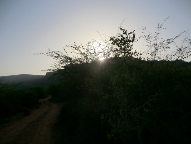 A beautiful sunrise at Ranthamboreof Ranthambore