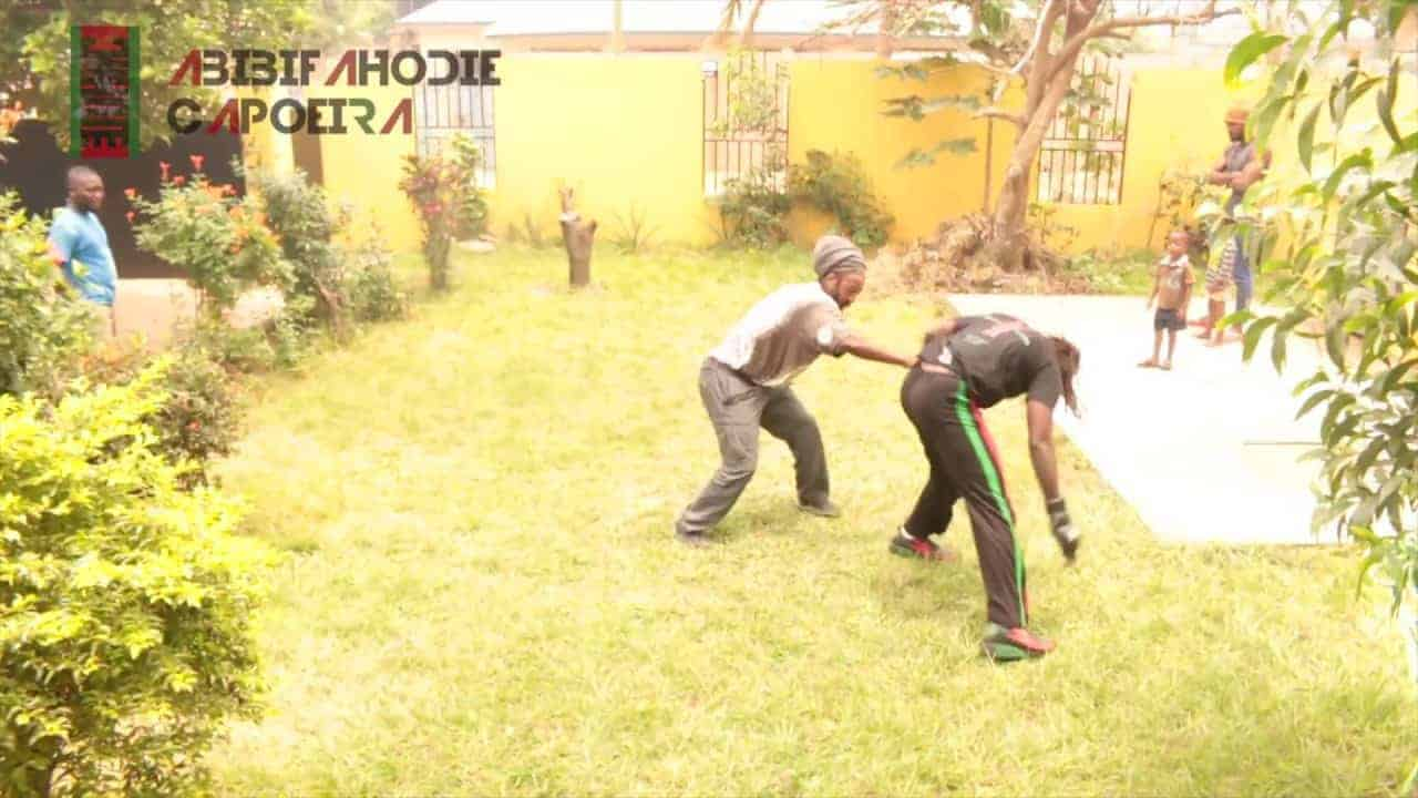 Abibifahodie Afrikan Combat Capoeira Light Sparring, Movements and Discussion