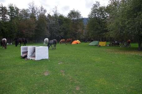 11-camping