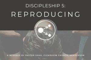Discipleship Reproducing