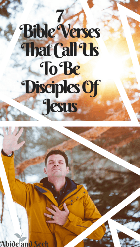 7 Verses That Call Us To Be Disciples Of Jesus Abide And Seek