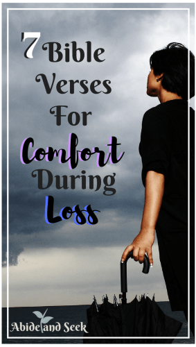 7 Bible Verses For Comfort During Loss Abide And Seek