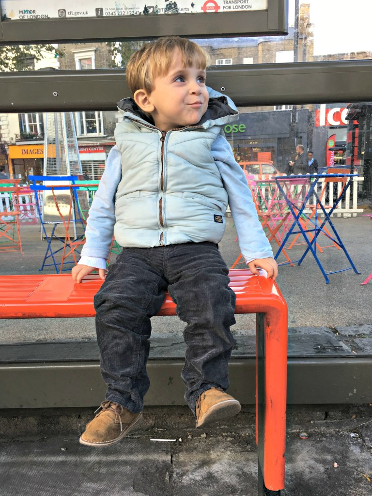 A Boy and a Kidney Transplant in London - A Bird with a French Fry