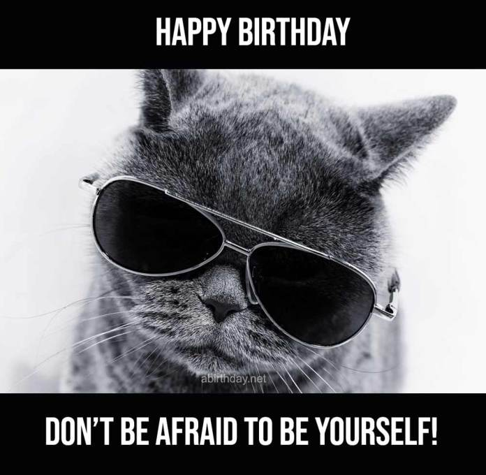 Cat With Sunglasses Birthday Meme