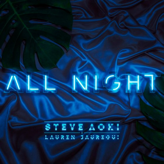 steve aoki lauren jauregui all night