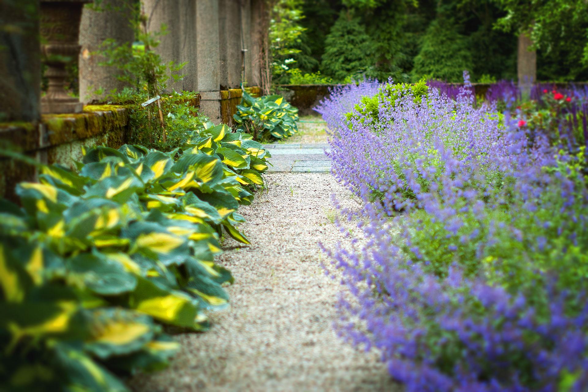 How to Design a Low Maintenance Garden | a Blade of Grass on Low Maintenance:cyizg0Gje0G= Backyard Design  id=72322