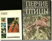 Птицы и насекомые