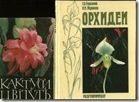 Кактусы, орхидет