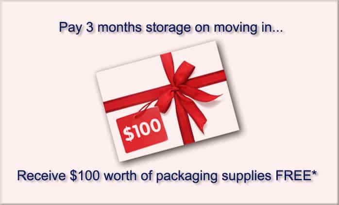 Free gift storage packaging
